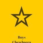 boys chewbacca costume
